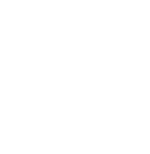 Everest Risk Group